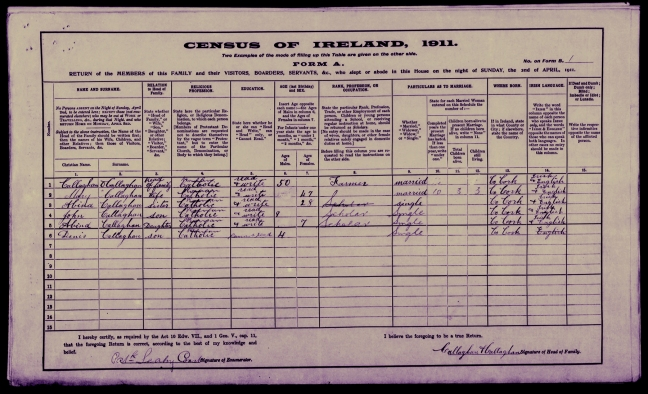 Callaghan household census 1911